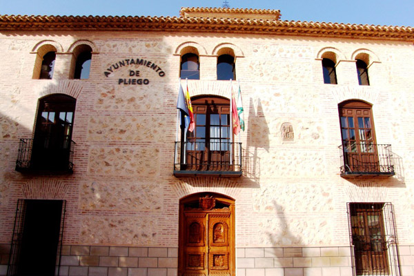 El Pleno Municipal debatirá hoy la aprobación del convenio con Cefusa-El Pozo para la cesión del uso de La Almoloya