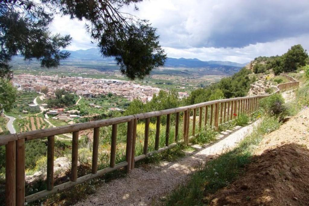 Vídeo de promoción de la floración del albaricoque en Pliego
