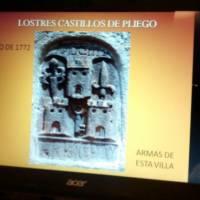Libro 3 castillos de Pliego