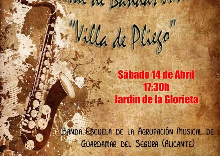 El sábado 14 se celebrará el I Festival de Bandas Juveniles 'Villa de Pliego'