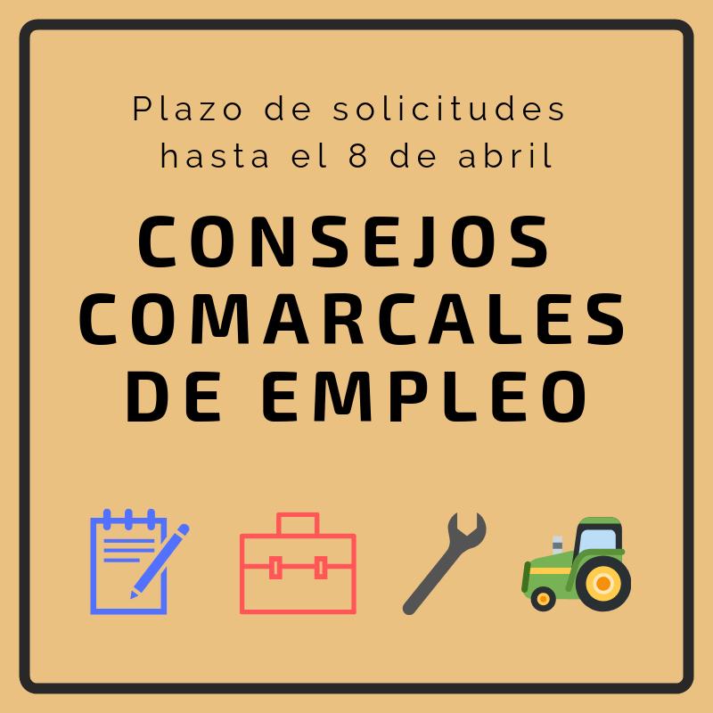 Abierto el plazo de solicitudes para el programa de empleo de los Consejos Comarcales