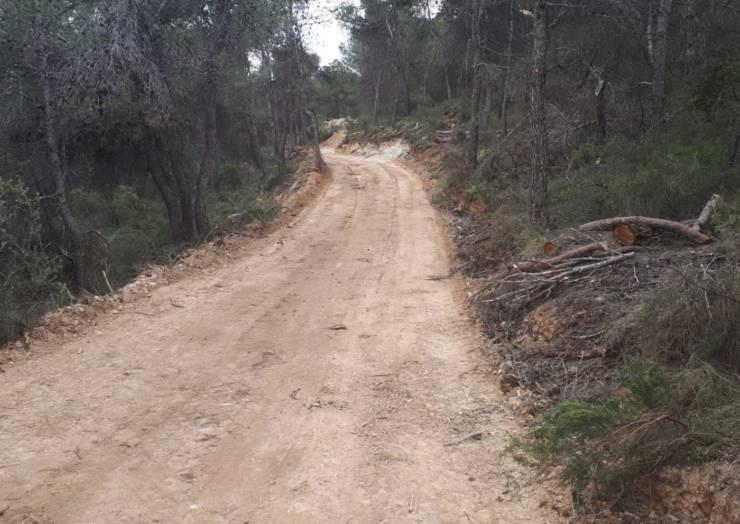 Ya está abierto el camino de La Almoloya