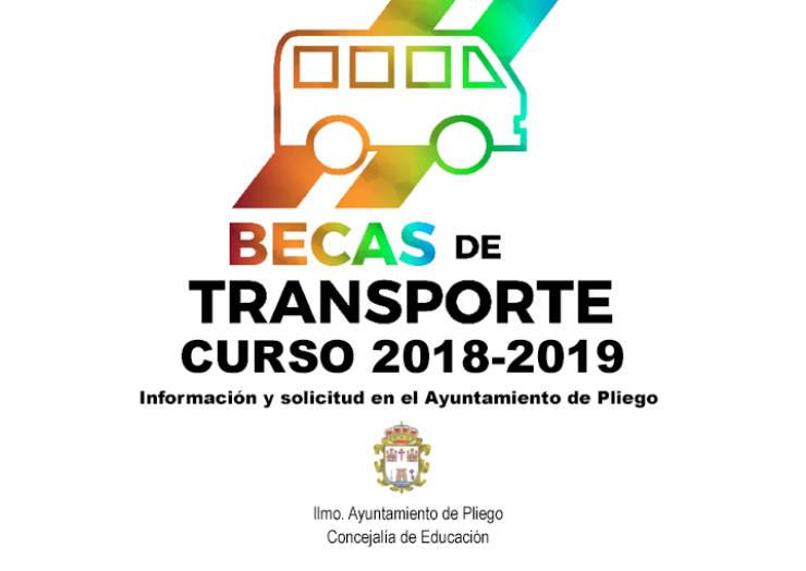 Abierta la convocatoria para solicitar las becas del Ayuntamiento de Pliego para transporte del curso escolar 2018-2019.