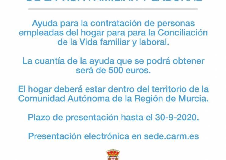 Ayudas a la Conciliación