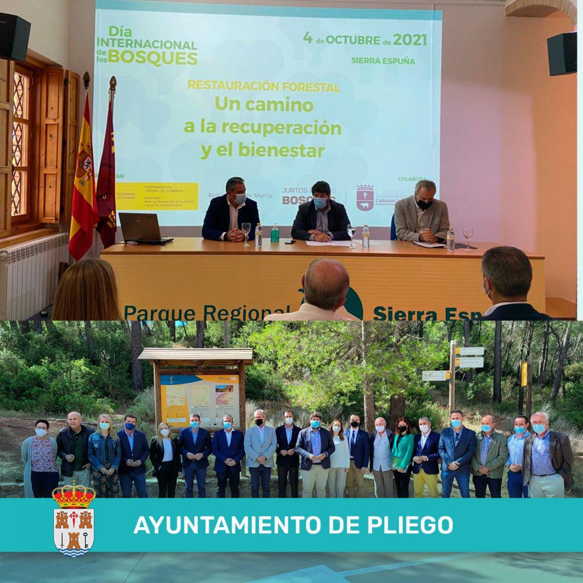 «Restauración forestal, un camino a la recuperación y el bienestar»