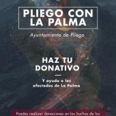 Apoyo a los afectados de La Palma
